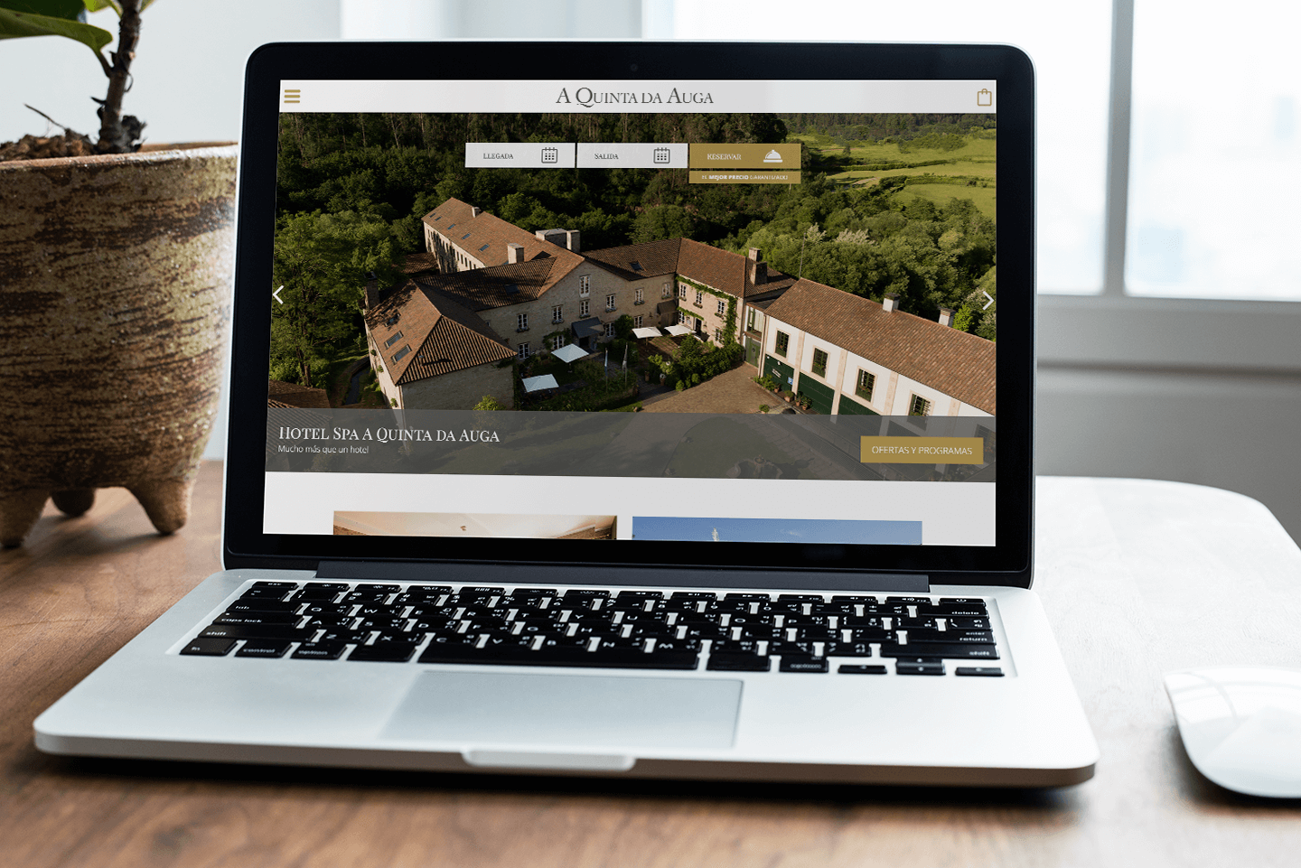 A Quinta da Auga Corporate Website